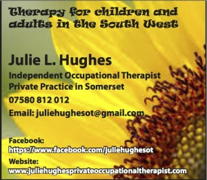 Julie L Hughes copy