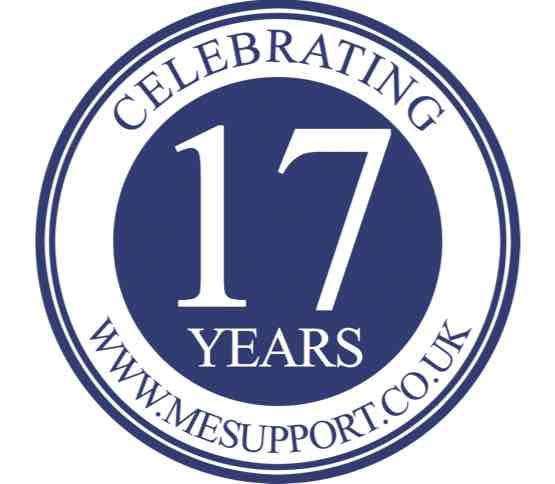 mesuk_anniversary_logo copy