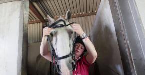 horserider emi lo rea